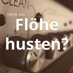 Höre ich Flöhe husten? Besserer Sound mit dem Fraunhofer MP3-Konverter auf dem MAC